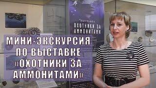 Вологодский музей онлайн / Мини-экскурсия по выставке «Охотники за аммонитами»