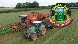 Trailer: Tractor Ted All About Harvesters