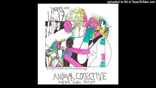 Animal Collective - Prester John