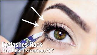 Applying False Eyelashes Hack | To Look Like Lash Extensions!? | TheMakeupChair