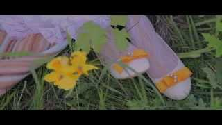 Веселый свадебный клип Руслан и Милечка (Lanskov Video)