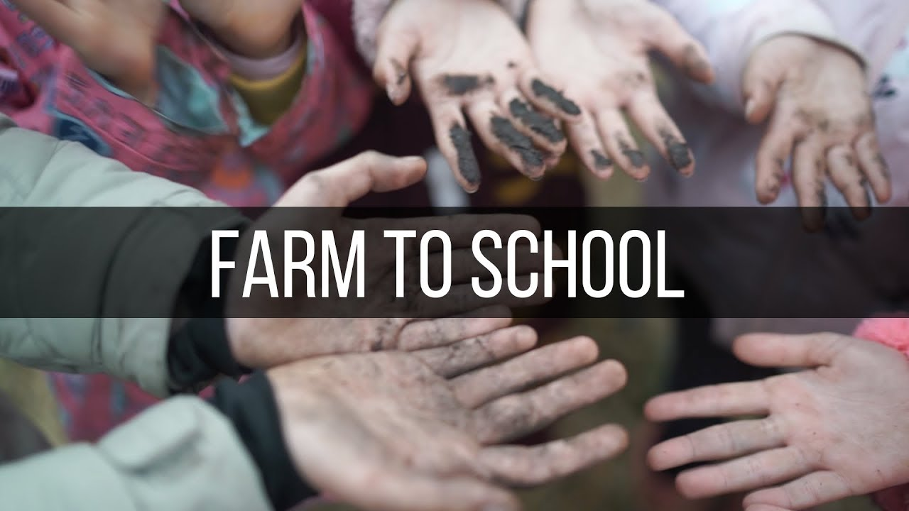Farm To School Field Trip At Cherry Valley Cooperative
