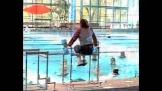 WETS AquaFrame Aqua Aerobics Instructor Equipment
