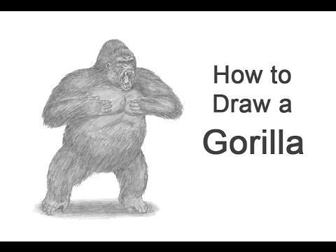 How to Draw a Gorilla (Aggressive Display)