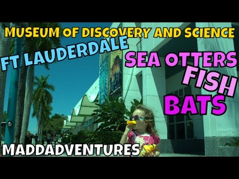 Museum of Discovery and Science Fort Lauderdale - MaddAdventures