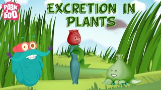 Excretion In Plants | The Dr. Binocs Show | Learn Videos For Kids