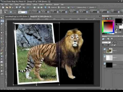 how to put an image to another background coreldraw x7
