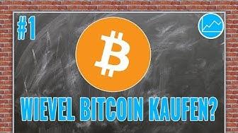 Einstieg in BTC: Wieviel Bitcoin sollte man besitzen? Was sind realistische Ziele und Erwartungen?