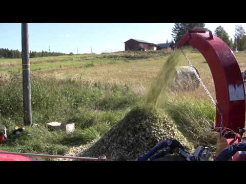 FARMI 180 HF - Processing fresh willow (HD)
