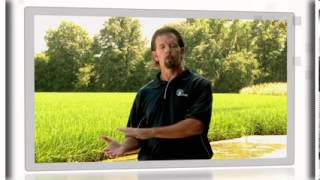 The Right Way to Grow Rice ...4R Nutrient Stewardship