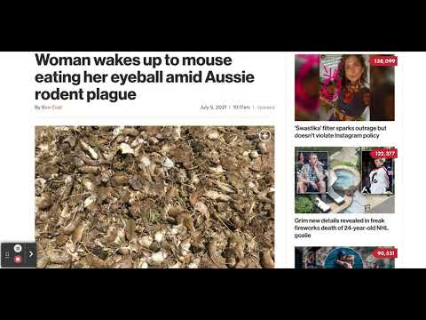 Aussie Woman Woke Up To A Mouse Eating Her ?