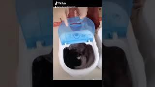 Máy giặt mini - Máy giặt mini cho em bé - Máy giặt mini giá rẻ cá nhân