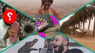 التمساح الحلقة ١٢٤: العبودبادية المفاجئية  | Temsa7LY