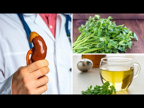 4 Secrets Herbs to Keep Your Kidneys Healthy