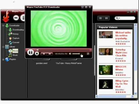 how to use YouTube FLV Downloader