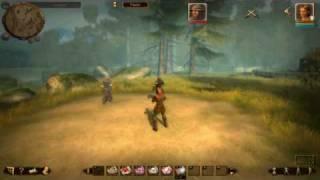 Drakensang: The Dark Eye Demo