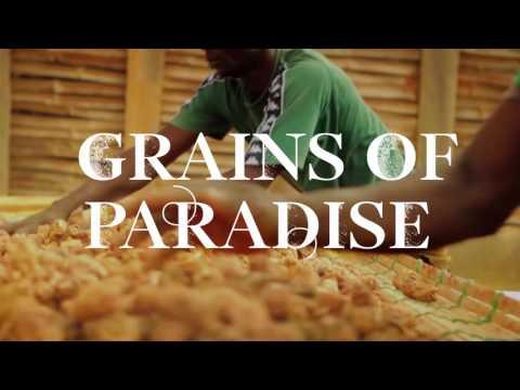 Bombay Sapphire Grains of Paradise Botanicals