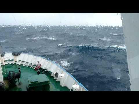Molchanov, Strong Gale, Scotia sea 19 Feb 2009