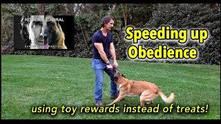 #16 Using Toys to Speed Up Obedience - Dog Training