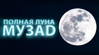 МУЗAD - Авария, Ария и полная луна