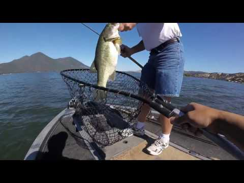 Clear lake fishing report may 2017 funnycat tv for Clear lake fishing report