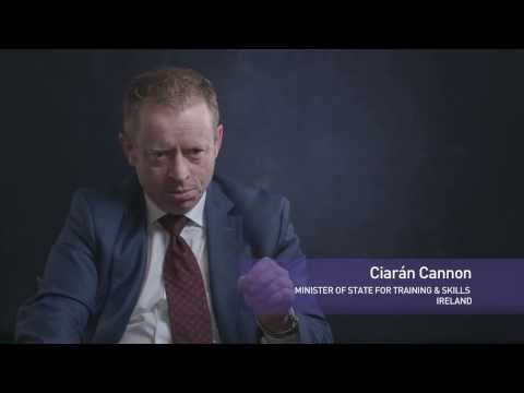 Ciarán Cannon, Minister of State for Training and Skills, Ireland