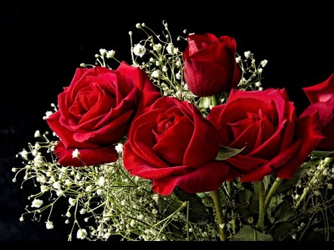 All images of beautiful flower bouquets