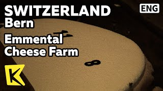 에멘탈 전통 치즈 목장/Emmental Cheese Farm/Master/Artisan