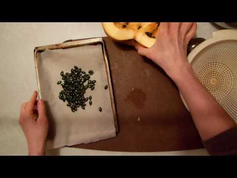 Cuisiner la courge: Lady Godiva
