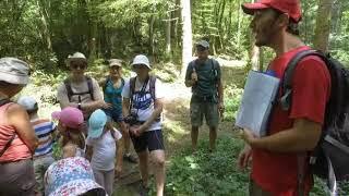 Les sorties estivales de l'Office de tourisme Jura Sud