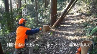 Repeat youtube video ハンドウインチによる掛かり木処理
