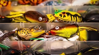 Frog Fishing For Bass | Everything You Need To Know