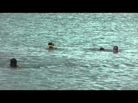 snorkle for turtle at frances bay