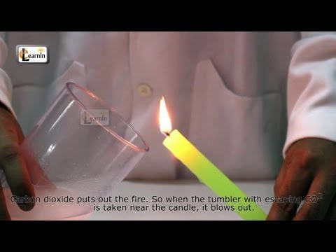 Candle and Carbondioxide - Science Experiments for School Kids
