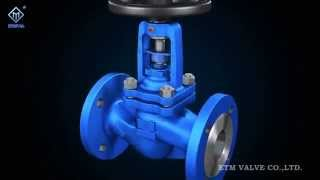 ETM DIN Bellows Globe Valve 1(, 2015-08-13T03:41:41.000Z)