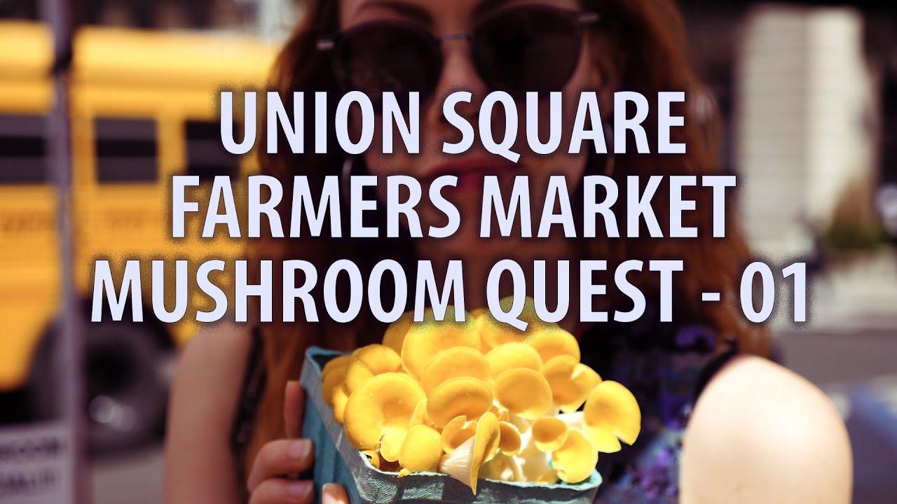 NYC VLOG UNION SQUARE FARMERS MARKET- MUSHROOM QUEST- NYC-01