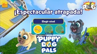 Puppy Dogs Pals | Espectacular Atrapada! | Disney Junior