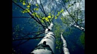 Fading Colours - Spring (Nosferatu Mix)