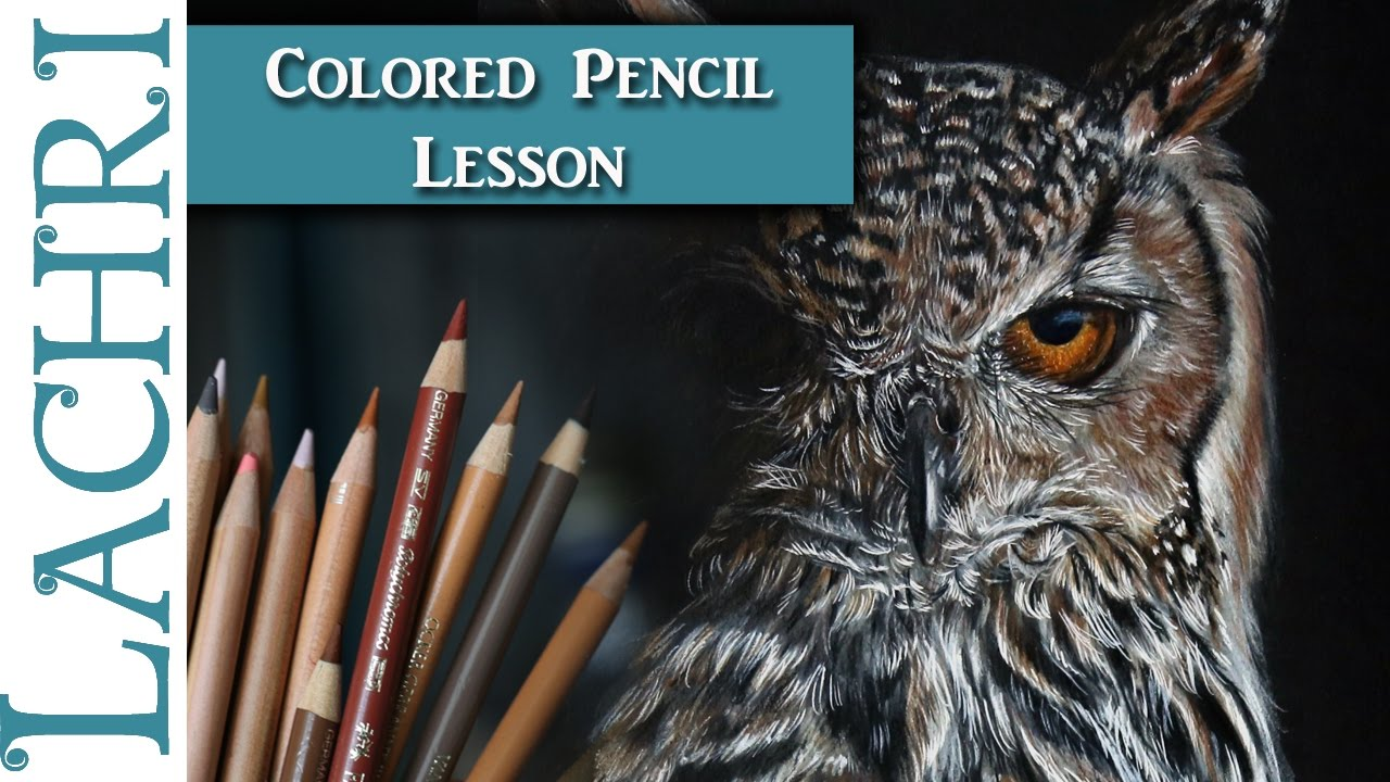 How To Draw A Realistic Owl In Colored Pencil