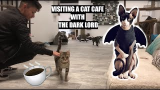 Visiting a Cat Cafe with the Dark Lord!