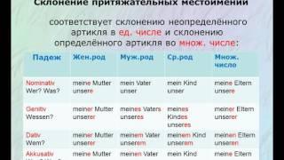 3. Притяжательные местоимения. Грамматика немецкого языка