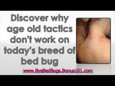 how to detect hidden bugs