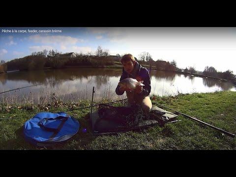 Pêche à La Carpe, Feeder, Carassin Brème