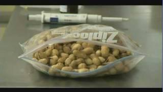 Detección de los puntos críticos de contaminación con aflatoxinas del cacahuate (1/2)