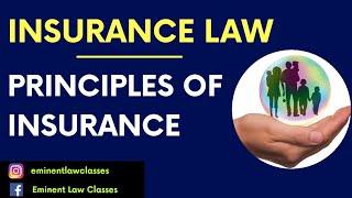 Principles of insurance, Insurance law, 7 बीमा के सबसे महत्वपूर्ण सिद्धांत