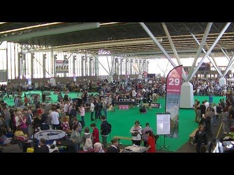 World Dog Show 2018 Amsterdam 2