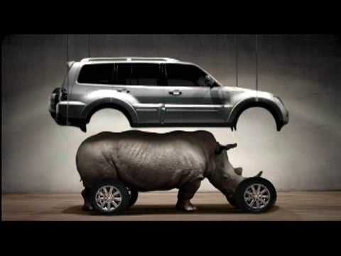 Image result for Pajero rhino