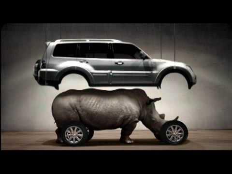 Image result for Pajero rhino