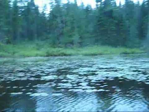 Algonquin Park: Misty Lake 2009
