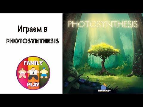 Настольная игра - Photosynthesis Let's Play Фотосинтез
